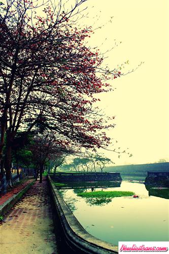Có nên đi du lịch Huế vào mùa mưa?
